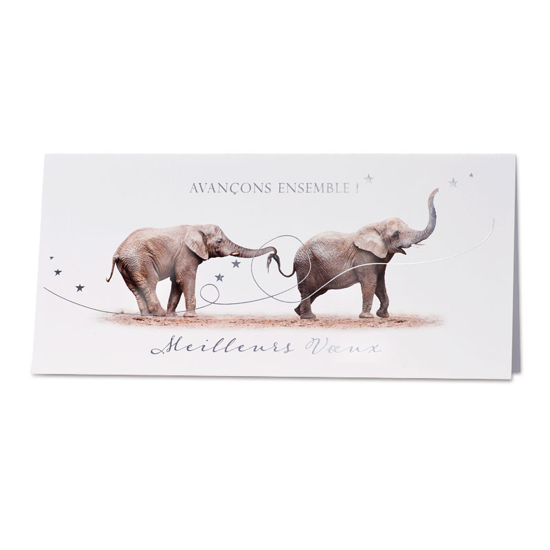 Nieuwjaarskaart olifanten 'avançons ensemble' (848.032)