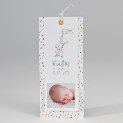 Carte naissance lapinou (507.016)