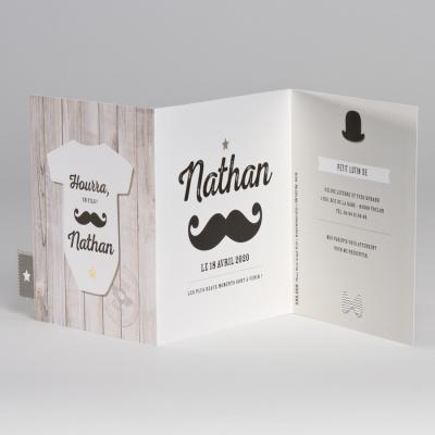 Chapeau melon et moustache  (586.008)