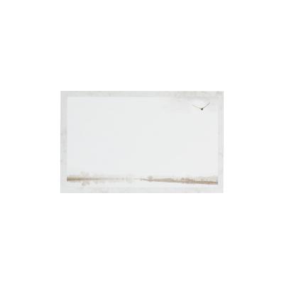 Carte civile oiseau et paysage  (670.009)
