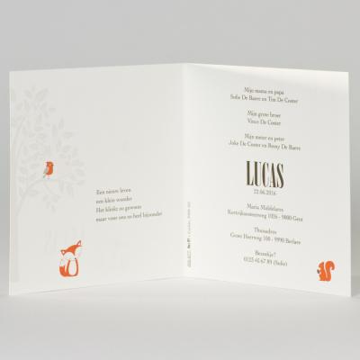Witte geboortekaart met oranje bosdiertjes (505.077)