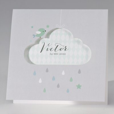 Grijze geboortekaart met muntgroene wolk (507.024)