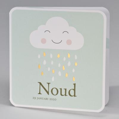 Goedlachse wolk met gouden regendruppels - munt (507.026)