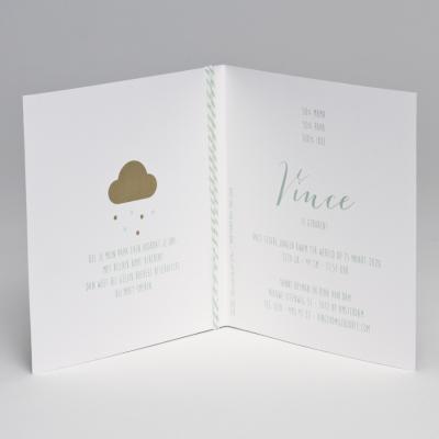 Geboortekaart met glitterconfetti - munt (507.045)