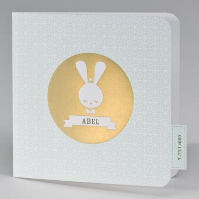 Schattig geboortekaartje retro konijn munt met goudfolie (507.069)