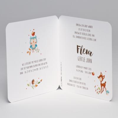 Kleurrijke krans met bloemetjes en bosdiertjes  (507.092)