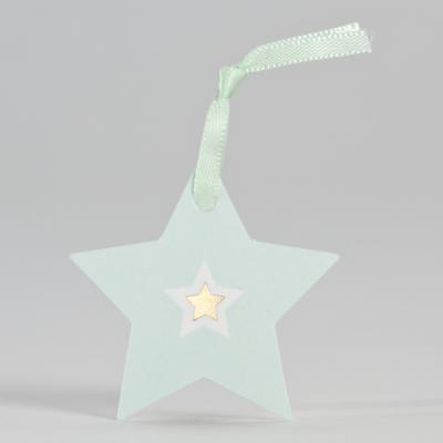 Mintgroene ster met goudfolie (556.010)