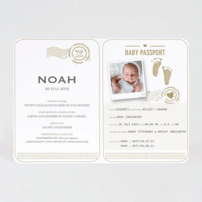 Eco paspoort geboortekaartje met stempel in koperfolie (589.024)