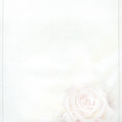 Enkele rouwbrief met roze roos (620.054)