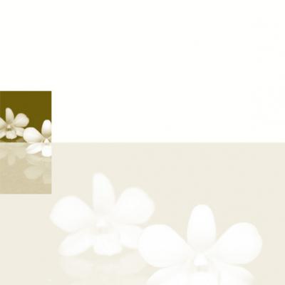 Dubbele plano rouwbrief met orchidee (636.904)