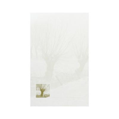 Dubbele rouwkaart met knotwilg in coupon van 2 (640.042)