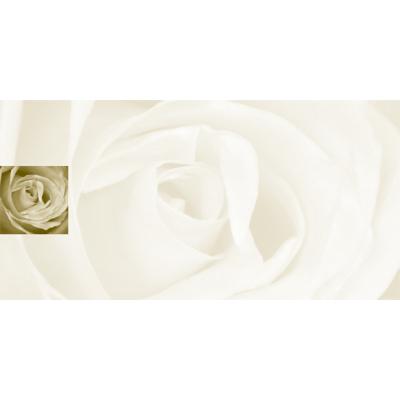 Rechthoekige rouwkaart met roos (642.905)