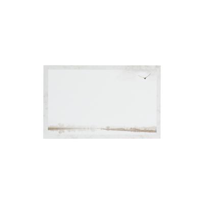 Dankkaart / deelnemingskaart met vogel en dorpje onderaan (670.009)