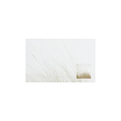 Dankkaart / deelnemingskaart met duingras (670.023)
