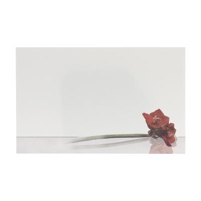 Dankkaart / deelnemingskaart met amaryllis in coupon van 2  (671.020)