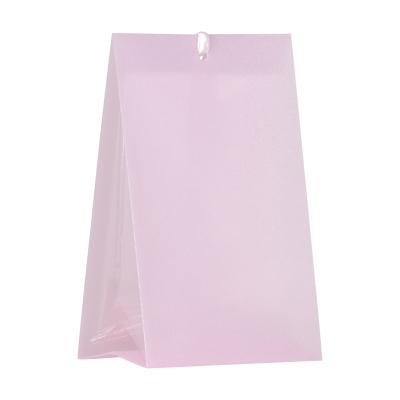 Roze snoepzakwikkel in kunststof + micazakje (743.018)