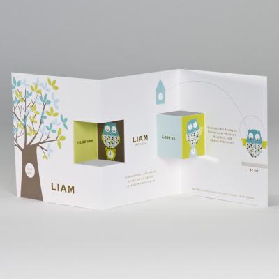 Eule & Baum in Trendfarben: Limone & Türkis  (584.058)