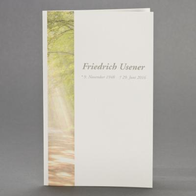 Doppelkarte mit Waldlichtung (642.148)