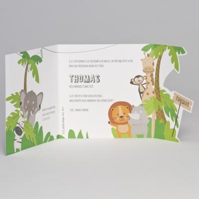 Animaux de la jungle (507.087)