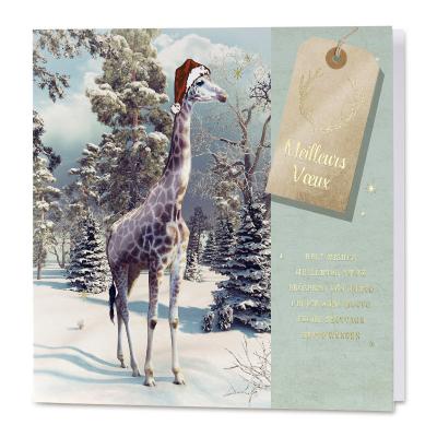 Carte de vœux professionnelle humoristique sur décor hivernal  (840.106)