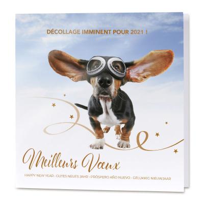 Carte de vœux entreprise humoristique avec chien  (840.134)