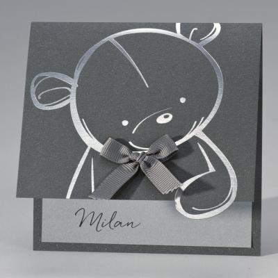 Schattige teddybeer op staal (507.055)