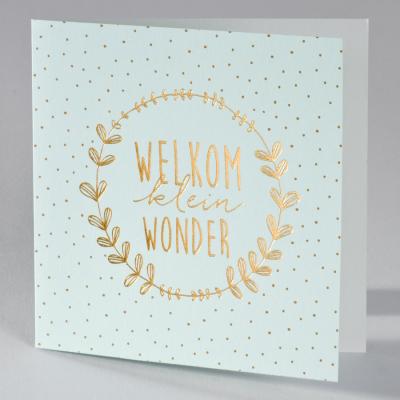 Geboortekaart Welkom klein wonder - mint (586.037)